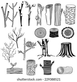 Types of wood. Freehand drawing, black and white graphics.
