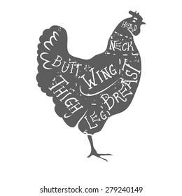 Typographic chicken butcher cuts diagram vintage style vector