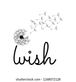 typography: dandelion  flower as a part of word wish