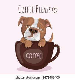 typography slogan and hand drawn French Pitbull Dog  with coffee for printing, t shirt.vector illustration