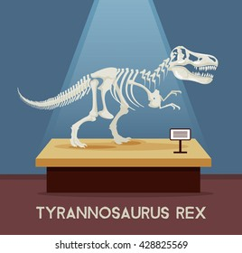 Tyrannosaur Rex bones skeleton in museum exhibition. Vector flat cartoon illustration