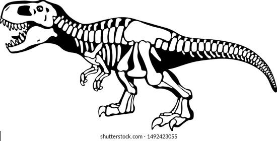 Tyrannosaurus rex bones, dinosaur skeleton monochrome illustration. Dangerous predator black and white drawing. Prehistoric wildlife, paleontology logotype. Jurassic period exhibition, museum piece