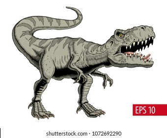 Tyrannosaurus rex or t rex isolated on white. Vector illustration.