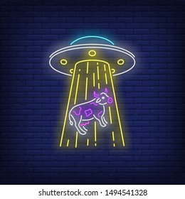 UFO abducting cow neon sign. Invasion, fantasy, extraterrestrial intelligence design. Night bright neon sign, colorful billboard, light banner. Vector illustration in neon style.