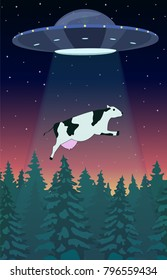 UFO abducts a cow. Freehand drawn fancy cartoon style. Space aliens and cattle. Flying saucer beam picks up animal from farm field. Illustration of paranormal visitors contact on planet earth