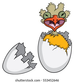 Ugly bird hatching from egg and screaming