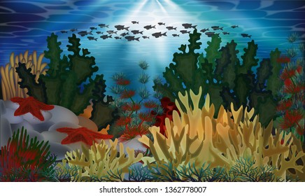Underwater background with algae and starfish, vector illustration