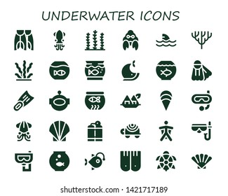 underwater icon set. 30 filled underwater icons.  Collection Of - Flippers, Squid, Seaweed, Hermit crab, Shark, Coral, Fishbowl, Aquarium, Whale, Fish bowl, Fins, Aqualung, Clam
