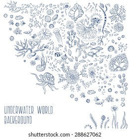 underwater life with jellyfish, fish, seaweed, vector