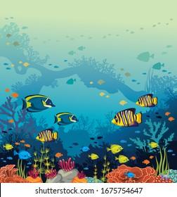 Unterwasserwelt und mariner Tierwelt. Schule für tropische Fische und Korallenriff auf blauem Hintergrund. Vektorillustration Ozeangrafik.