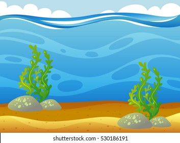 Underwater scene with seaweeds illustration