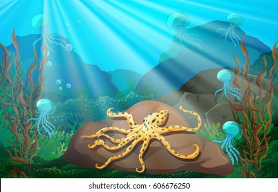 Underwater scene with squid on rock illustration