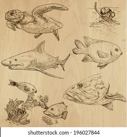 Underwater, Sea Life (vector set no.1)  - Collection of an hand drawn illustrations. Description: Each drawing comprise of two basic layers of outlines, the colored background is isolated.