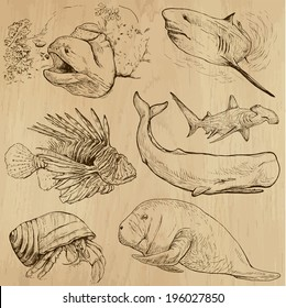 Underwater, Sea Life (vector set no.4)  - Collection of an hand drawn illustrations. Description: Each drawing comprise of two basic layers of outlines, the colored background is isolated.