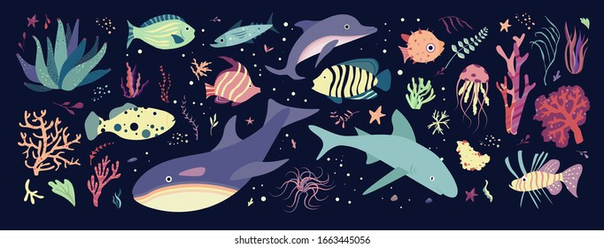 Underwater sea world dwellers, flora and fauna elements. Fishes and medusa, dolphin, killer, whale shark. Vector cartoon illustration.