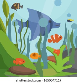 Underwater seascape with exotic fish vector illustration backdrop. Sea plants, fish, blue bubbles of water background. Natural south tropical sealife for zoo aquarium shop or traveling agency poster.