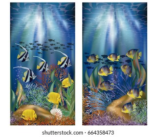 Underwater tropical banners, vector illustration