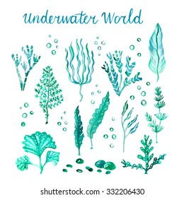 Underwater watercolor algae set. Vector watercolor marine life. Hand drawn various green plants, seaweeds, kelps, stones, bubbles isolated on white background.
