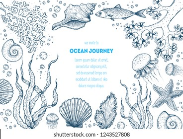 Underwater world hand drawn collection. Sketch illustration. Seaweed, coral, seashells, starfish, jellyfish, fish illustration. Vintage design template. Undersea world collection.