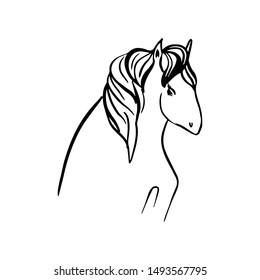 Unicorn hand drawn illustration for your design