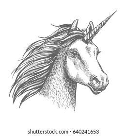 Unicorn head. Mythical heraldic equine animal with horn. Vector sketch mythic horse