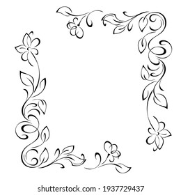 unique decorative frame with stylized flowers on stems with leaflets and curls in black lines on a white background