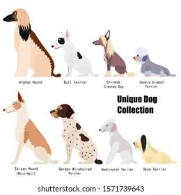Unique dog breed side view set