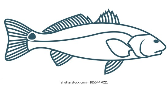 Unique and Fresh Redfish Logo template. Great to use as your redfish fishing activity.