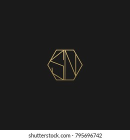 Unique Geometric Polygon Shape golden and black color initial based SN LOGO