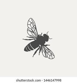 Unique Honey Bee Fly vector