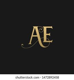 Unique trendy stylish AE initial based letter icon logo
