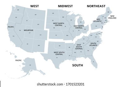 United States divided in Census regions and divisions, gray map. Region definition used for data collection and analysis. Most commonly used classification system. English. Illustration. Vector.