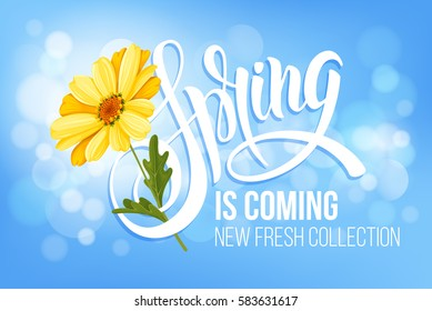 Unusual calligraphic inscription Spring is coming with spring flower - blooming yellow daisy. Conceptual vector illustration for advertising new product or announcement other events.