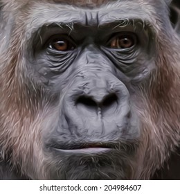 Unusual smart face portrait of a gorilla female. Human like wisdom expression of the great ape, the biggest primate of the world. Amazing vector image in oil painting style. Beauty of the wildlife.
