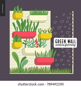 Urban farming, gardening or agriculture. Green wall - vertical farming. A wall with flowerpots and irrigating system
