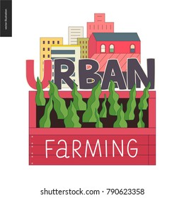 Urban farming, gardening or agriculture sign logo. A wooden seedbed with leaves of salad, a house on the background