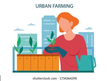 Urban farming or gardening concept. City agriculture. People planting and watering the sprout on the roof or balcony. Natural organic food. Isolated vector illustration