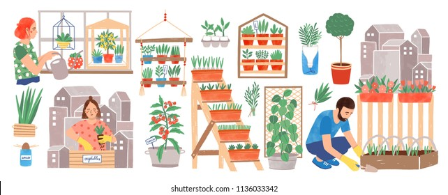 Urban gardening collection. People living in city cultivating plants, growing crops or vegetables in pots at home or on balcony isolated on white background. Colorful hand drawn vector illustration