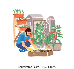 Urban gardening flat vector illustration. Male gardener planting herbs cartoon character. Greening, landscaping. Garden, yard, green space. Grower and flowerpots isolated on white background.