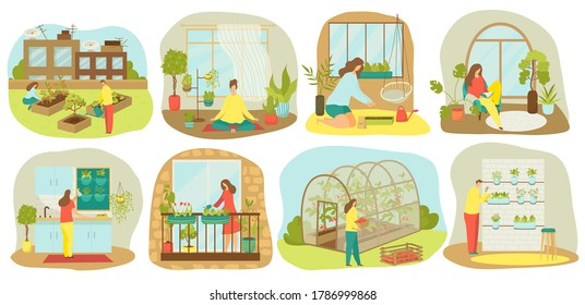 Urban gardening, plants and vegetables or agriculture set of vector illustrations. Planting garden on balcony, in kitchen, wooden seedbeds, vertical and roof farming and hydroponics, urban garden.