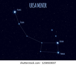 Ursa Minor (Little Bear, Little Dipper) constellation, vector illustration with the names of basic stars against the starry sky
