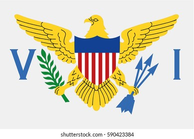 U.S. Virgin Islands flag vector