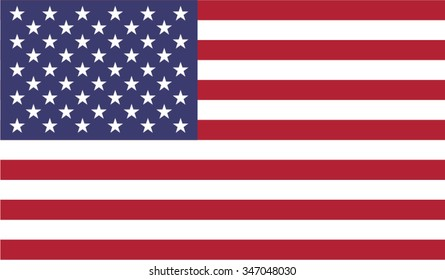 USA; America; United States of America Flag vector image