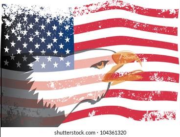 USA flag with eagle grunge. Vector.