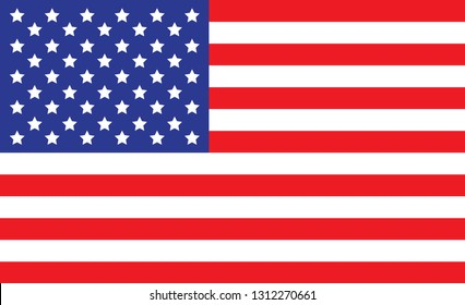 USA flag. Simple vector The United States of America flag