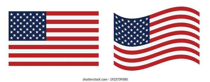 USA flag vector illustration. eps 10 vector