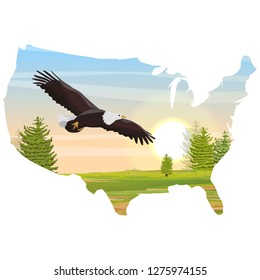 USA map. The big bald eagle flies over the valley and the fir forest. Animals of North America.