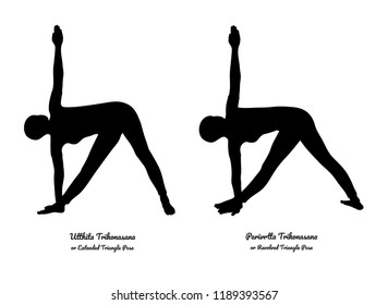 Utthita Trikonasana (Extended Triangle Pose) and Parivrtta Trikonasana (Revolved Triangle Pose). Vector.
