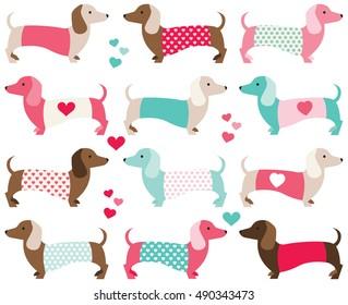 Valentine Dachshund / Dogs