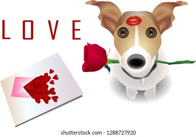 """Valentine's day  card. Dog cute holding red rose in mouth, with text """"love"""" card vector illustration. - เวกเตอร์"""